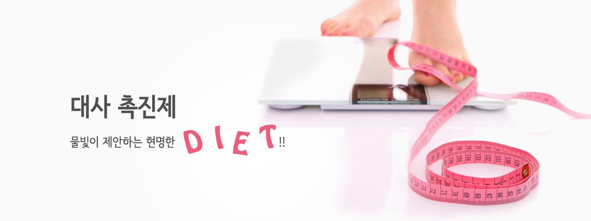 체중 조절 - 약물 치료 - 대사 촉진제 소개