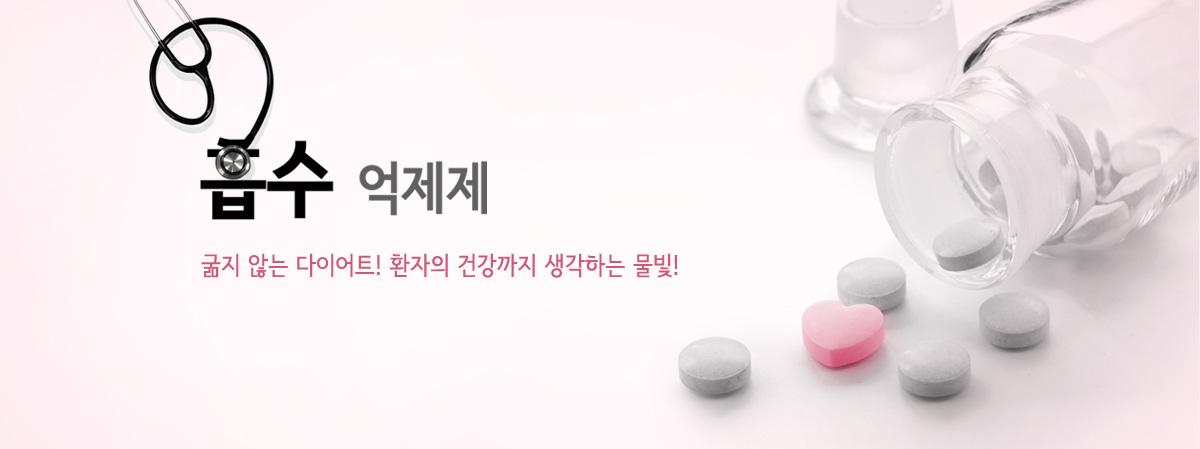 체중 조절 - 약물 치료 - 흡수 억제제 & 기타소개