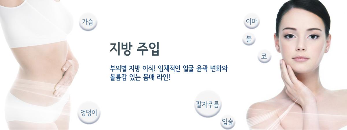 지방 주입 리프팅 소개